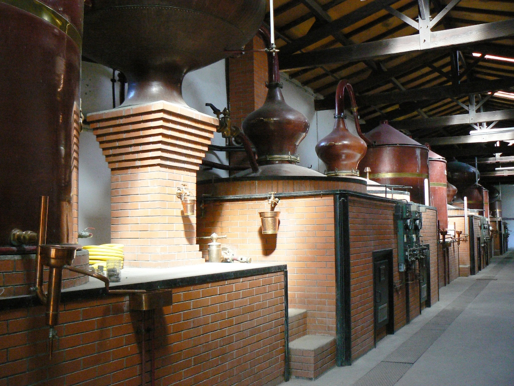 Vignoble du Cognac distillerie