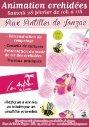 Expo orchidees 28-février site